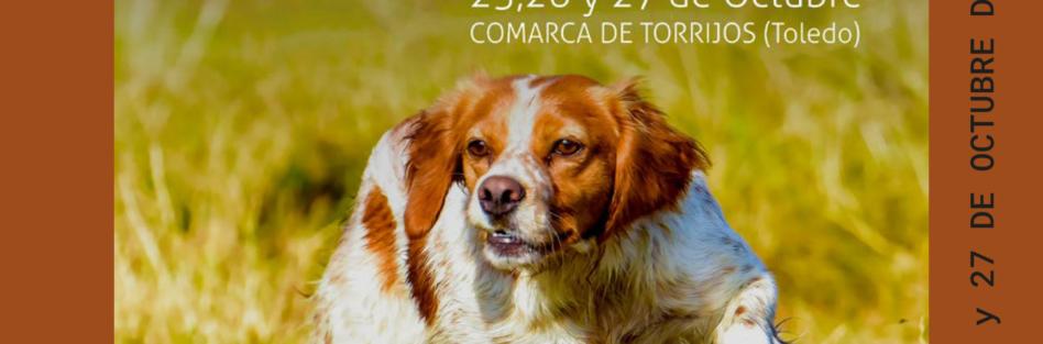 Campeonato del Mundo de Perros de Muestra 2018