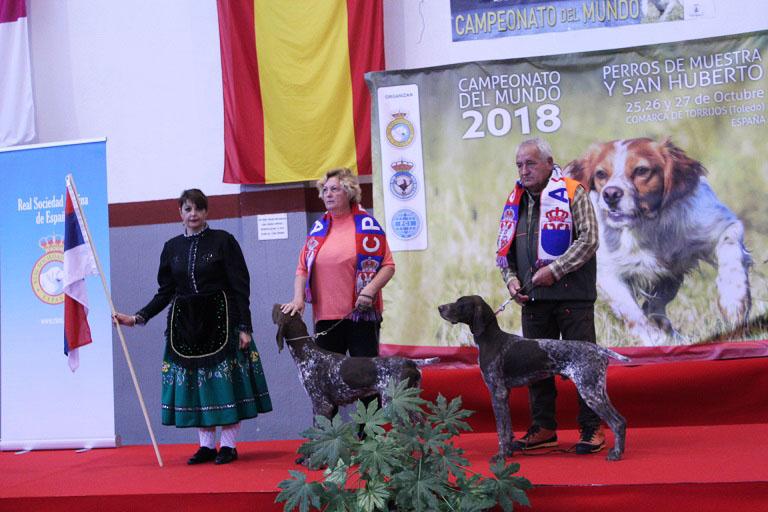 perros12